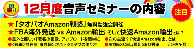 Amazonコンサルタント2012年12月度音声セミナー