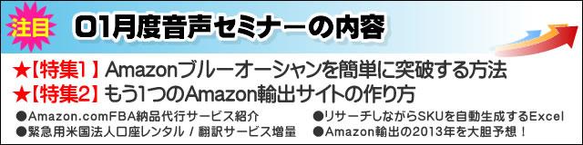 Amazonコンサルタント2013年01月度音声セミナー