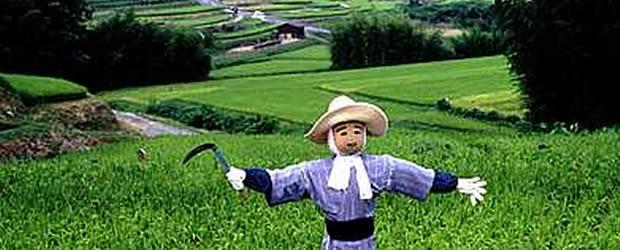 日本破綻に備えて「農業に転職」は意味なし。カカシの画像