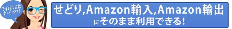 バイキング・シリーズは、せどり、Amazon輸入、Amazon輸出にそのまま利用できます。円高の時にAmazon輸入、円安の時にAmazon輸出、副収入にせどりなど、自由自在です。